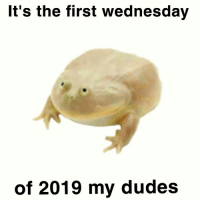 my dude: It's the first wednesday  of 2019 my dude:s