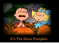 For more awesome holiday and fun pictures go to... 🎃🎃🎃🎃🎃🎃www.snowflakescottage.com: It's The Great Pumpkin For more awesome holiday and fun pictures go to... 🎃🎃🎃🎃🎃🎃www.snowflakescottage.com