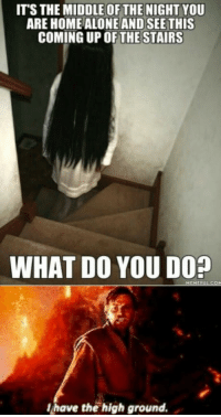 Meme, Home, and Power: ITS THE MIDDLE OF THE NIGHT YOU  ARE HOME ALONEAND SEE THIS  COMING UP OFTHESTAIRS  WHAT DO YOU DO?  MEME  lhave the high ground. You underestimate my power