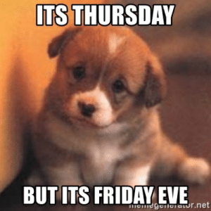 Cute, Friday, and It's Friday: ITS THURSDAY  BUT ITS FRIDAY EVE  meiegereiaor.net Its Thursday But its Friday eve - cute puppy | Meme Generator