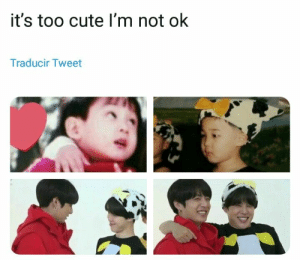 Cute, Bts, and Tweet: it's too cute I'm not ok  Traducir Tweet #bts #jimin #jungkook