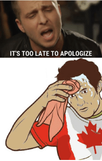 too late to apologize: ITS TOO LATE TO APOLOGIZE