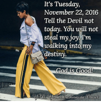 Church, Computers, and Memes: It's Tuesday,  November 22, 2016  Tell the Devil not  today. You will not  steal my joy. I'm  walking into my  destiny  God is Good! LISTEN TO CHURCH SERMONS ONLINE 24 HOURS A DAY, 7 DAYS A WEEK  From your COMPUTER or LAPTOP ONLY, you can now listen to over 500 sermons 24 hours a day, 7 days a week, 365 days a year. You will be encouraged, motivated, inspired and get a closer relationship with God. Anytime you need that extra push, you can always come here to get it. Again, from your computer or laptop ONLY, please go to: http://www.ListenToChurchSermonsOnline.com/