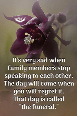 "The Funeral: It's very sad when  family members stop  speaking to each other.  The day will come when  you will regret it.  That day is ealled  ""the funeral."""