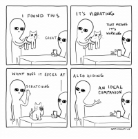 Dank, Memes, and Target: IT'S VIBRATING  I FOUND THIS  THAT MEANS  IT S  WORKING  GREAT  WHAT DOES IT EXCEL ATİİ ALSO HIDING  AN IDEAL  COMPANION  SCRATCHING  NAT HANWPYLE me_irl by Baybasher MORE MEMES
