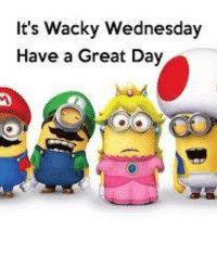 Good Wednesday Mornin!!!  Gonna be a good day for a nap later.  Hope you guys hava great day.   Come on ovah to Mia's for all da funs.: It's Wacky Wednesday  Have a Great Day Good Wednesday Mornin!!!  Gonna be a good day for a nap later.  Hope you guys hava great day.   Come on ovah to Mia's for all da funs.