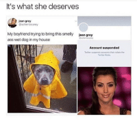 Ass, Memes, and My House: It's what she deserves  jcan grey  @schertzcarey  My boyfriend trying to bring this smelly  ass wet dog in my house  jean grey  schertzcarey  Account suspended  Twitter suspends accounts that viotate the  Twitter Rules Follow my other accounts @antisocialtv @lola_the_ladypug @x__antisocial_butterfly__x