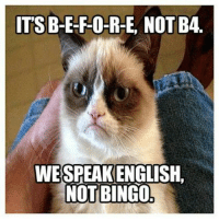 Grumpy Cat, Nice, and Haha: ITSB-E-F-O-R-E, NOT B4.  WESPEAKENGLISH.  NOT BINGO Haha, nice one grumpy cat :-) #GrumpyCat
