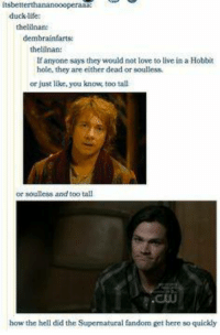 Life, Love, and Memes: itsbett  duck life  thelilnan:  dembrainfarts  thellnan:  If anyone says they would not love to live in a Hobbit  hole, they are either dead or soulless.  or just like, you know, too tall  or soulless and too tall  how the hell did the Supernatural fandom get here so quickly