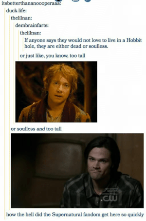 18 Tumblr Posts That Prove The Supernatural Fandom Is Everywhere ...: itsbetterthananoooperaaa:  duck-life:  thelilnan:  dembrainfarts:  thelilnan:  If anyone says they would not love to live in a Hobbit  hole, they are either dead or soulless.  or just like, you know, too tall  or soulless and too tall  HEİCAS  how the hell did the Supernatural fandom get here so quickly 18 Tumblr Posts That Prove The Supernatural Fandom Is Everywhere ...