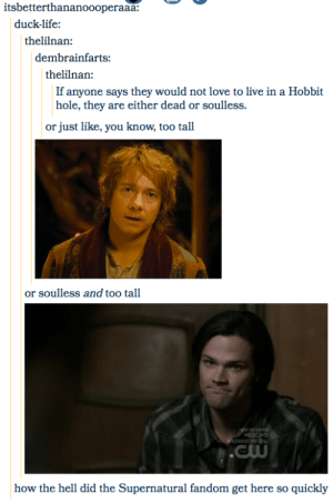 18 Tumblr Posts That Prove The Supernatural Fandom Is Everywhere ...: itsbetterthananoooperaaa:  duck-life  thelilnan  dembrainfarts:  thelilnan:  If anyone says they would not love to live in a Hobbit  hole, they are either dead or soulless.  just like, you know, too tall  or  or soulless and too tall  NEW HI SEPICS  HELLCATS  WEDNESDAY 9  .Cw  how the hell did the Supernatural fandom get here so quickly 18 Tumblr Posts That Prove The Supernatural Fandom Is Everywhere ...