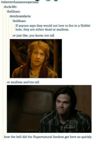 Supernatural Fandom: itsbetterthananoooperaaa  duck-life:  thelilnan:  dembrainfarts:  thelinan:  If anyone says they would not love to live in a Hobbit  hole, they are either dead or soulless.  or just like, you know, too tall  or soulless and too tall  A9  .Cw  how the hell did the Supernatural fandom get here so quickly