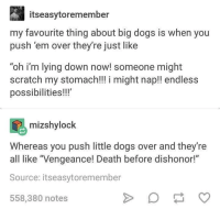 "Dogs, Memes, and Death: itseasytoremember  my favourite thing about big dogs is when you  push 'em over they're just like  ""oh i'm lying down now! someone might  scratch my stomach!!! i might nap!! endless  possibilities!!!  mizshylock  Whereas you push little dogs over and they're  all like Vengeance! Death before dishonor!""  Source: itseasytoremember  558,380 notes Shoutout to little dogs 😂"