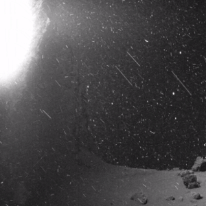 itsfullofstars: VIDEO FROM THE SURFACE OF A COMET This is truly incredible. Details: Remember Rosetta? That comet-chasing European Space Agency (ESA) probe that deployed (and accidentally bounced) its lander Philae on the surface of Comet 67P? This GIF is made up of images Rosetta beamed back to Earth, which have been freely available online for a while. But it took Twitter user landru79 processing and assembling them into this short, looped clip to reveal the drama they contained. : itsfullofstars: VIDEO FROM THE SURFACE OF A COMET This is truly incredible. Details: Remember Rosetta? That comet-chasing European Space Agency (ESA) probe that deployed (and accidentally bounced) its lander Philae on the surface of Comet 67P? This GIF is made up of images Rosetta beamed back to Earth, which have been freely available online for a while. But it took Twitter user landru79 processing and assembling them into this short, looped clip to reveal the drama they contained.