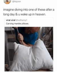 Cats, Heaven, and Memes: @itsjvon  imagine diving into one of these after a  long day & u wake up in heaven.  viral viral @xxlfunny1  Carving marble pillows. Cats can dream and produce the same brain wave patterns we do when we dream
