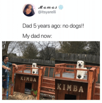 Dad, Dogs, and Memes: @itsyareli  Dad 5 years ago: no dogs!!  My dad now:  KIMBA  KIMBA You're doing great Kimba! Tw itsyarelli