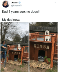 Dad, Dogs, and Life: @itsyarelli  Dad 5 years ago: no dogs!!  My dad now:  KIMBA  KIMBA Kimba living the life