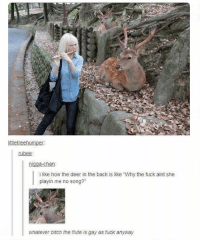 "Bitch, Deer, and Ironic: ittletreehumper  rubee:  nigga-chan  i like how the deer in the back is like ""Why the fuck aint she  playin me no song?""  whatever bitch the flute is gay as fuck anyway"