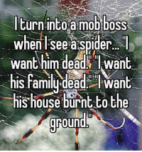 Anybody else?🕷🙅🙅🙅: Iturn intoa mob boss  wheni see a spider  want him dead Iwant  his familu dead  want  his house burnt o the  ground Anybody else?🕷🙅🙅🙅