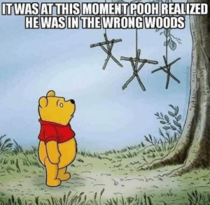 When Pooh realized he was in the wrong woods…: ITWASAT THIS MOMENT POOH REALIZED  HEWAS IN THE WRONG WOODS When Pooh realized he was in the wrong woods…