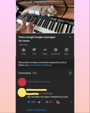 Me_irl: iu BALL  Thay Minh Piano  Piano woogie boogie massages  for meow  12M views  Share  740K  6.3K  Download  Save  Remember to keep comments respectful and to  follow our Community Guidelines  Comments 23K  Add a public comment...  5 months ago  My cat bites me when I breathe too loud  102K  451  VIEW 451 REPLIES Me_irl