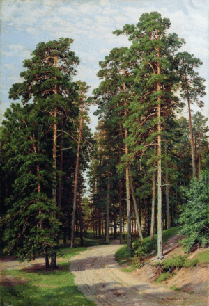 ivan-shishkin:The sun in the forest, 1895, Ivan Shishkin: ivan-shishkin:The sun in the forest, 1895, Ivan Shishkin