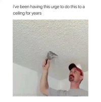 Oddly satisfying: i've been having this urge to do this to a  ceiling for years Oddly satisfying