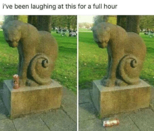 Cats, Memes, and Been: i've been laughing at this for a full hour Cats will be cats!