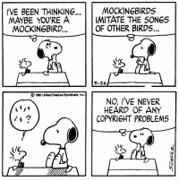 This strip was published on September 26, 1981. Snoopy has made several attempts in the strips to identify what species of bird Woodstock is, including a mockingbird, crow, American bittern, Caroline wren, rufous-sided towhee, yellow-billed cuckoo, Canada goose, warbler, mourning warbler, dove, and a duck. However, Schulz never definitively answered the question of what type of bird Woodstock was supposed to be. #NationalBirdDay: IVE BEEN THINKING  MOCKING BIRDS  IMITATE THE SONGS  MAYBE YOU'RE A  OF OTHER BIRDS...  MOCKINGBIRD...  9-26,  19et United Feature Syndicato, Inc.  NC, I'VE NEVER  HEARD OF ANY  COPYRIGHT PROBLEMS This strip was published on September 26, 1981. Snoopy has made several attempts in the strips to identify what species of bird Woodstock is, including a mockingbird, crow, American bittern, Caroline wren, rufous-sided towhee, yellow-billed cuckoo, Canada goose, warbler, mourning warbler, dove, and a duck. However, Schulz never definitively answered the question of what type of bird Woodstock was supposed to be. #NationalBirdDay
