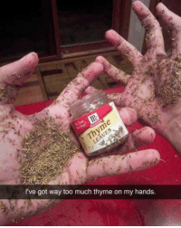 Dank, Too Much, and 🤖: I've got way too much thyme on my hands #jussayin