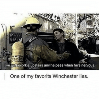 😂😂😂-owner supernatural deanwinchester samwinchester brothers castiel destiel jensenackles jaredpadalecki mishacollins cockles brotp j2: Ive gota yorkie upstairs and he pees when he's nervous.  One of my favorite Winchester lies. 😂😂😂-owner supernatural deanwinchester samwinchester brothers castiel destiel jensenackles jaredpadalecki mishacollins cockles brotp j2