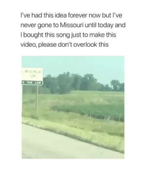 Fucking, Shit, and Tumblr: I've had this idea forever now but I've  never gone to Missouri until today and  l bought this song just to make this  video, please don't overlook this  BUCKLE  UP  THE LA katatles-the-fish:  the-last-of-the-frosty-boys:  pete-wetzel: I've been laughing at this stupid fucking video for 30 minutes Yall sont understand this is the funniest thing ive experienced in weeks   holy fucking shit