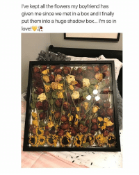Love, Flowers, and Mets: I've kept all the flowers my boyfriend has  given me since we met in a box and I finlly  put them into a huge shadow box...I'm so in  love! hey