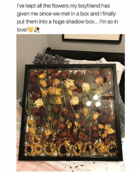 Cute, Love, and Memes: I've kept all the flowers my boyfriend has  given me since we met in a box and I finally  put them into a huge shadow box... I'm so in  love! Hands up for cute stuff like this 🙋🏼🙋🏼 Follow me @peopleareamazing for the most adorable posts ❤️
