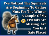I've Noticed The Squirrels  Are Beginning To Gather  Nuts For The Winter.  A Couple of My  Friends Are  Missing. Are  You In A  www.facebook.com/ShutUplm StillTalking  Safe Place? oh kidzbop meme memes minion minions facebook ironic laugh giggle funny comedy silly cancer autism humor fun happy follow like instagram
