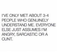 Memes, Cunt, and Angry: I'VE ONLY MET ABOUT 3-4  PEOPLE WHO GENUINELY  UNDERSTAND ME. EVERYONE  ELSE JUST ASSUMES I'M  ANGRY, SARCASTIC OR A  CUNT.