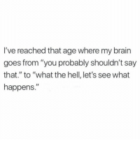 """Memes, Brain, and Hell: I've reached that age where my brain  goes from """"you probably shouldn't say  that."""" to """"what the hell, let's see what  happens."""""""