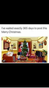 merry christmas gif: I've waited exactly 365 days to post this  Merry Christmas.  GIF  -It's the day after Halloween, Lin.