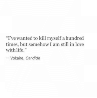 "Voltaire: ""I've wanted to kill myself a hundred  times, but somehow I am still in love  with life.""  Voltaire, Candide"