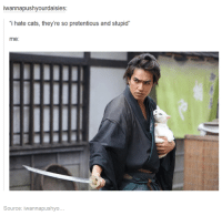 """Cats, Pretentious, and Humans of Tumblr: iwannapushyourdaisies:  i hate cats, they're so pretentious and stupid""""  me:  Source: iwannapushyo"""