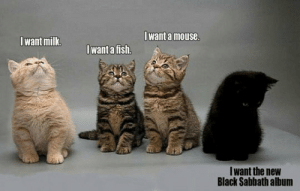 srsfunny:Some Kitties Are Different: Iwant a mouse  Iwant milk  want a fish.  Iwant the new  Black Sabbath album srsfunny:Some Kitties Are Different