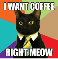 meme.com: IWANTCOFFEE  RIGHT MEOW  quick meme com
