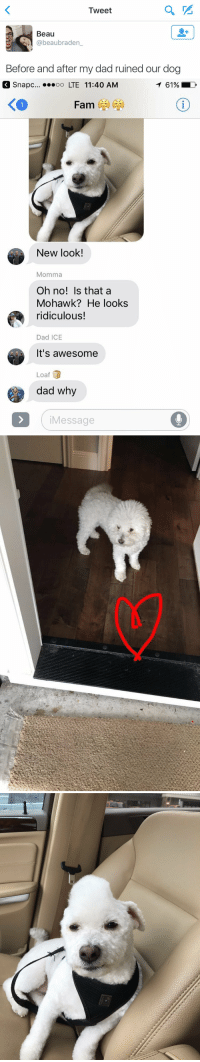 <p>OH MY GOD</p>: Iweet  Beau  @beaubraden_  Before and after my dad ruined our dog   Snapc..  LTE 11:40 AM  61%  く。  New look!  Momma  Oh no! Is that a  Mohawk? He looks  ridiculous!  Dad ICE  It's awesome  Loaf  dad why  iMessage <p>OH MY GOD</p>
