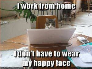38e3f3fe36 Funny, Lol, and Memes: Iwork fromhome Idon't have to wear my