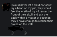 Brains, Puppies, and Skull: Iwould never let a child nor adult  lay a hand on my pet, they would  feel the wrath of my 44. enter the  front of their skull and exit the  back within a matter of seconds,  they'll have enough to realize their  brains on the wall.