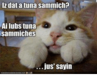 . . . and so polite  !   x: IZ dat atuna Sammich?  Ai lubs tuna  sammiches  jus sayin . . . and so polite  !   x