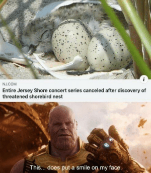 *Happiness noises*: J.COM  Entire Jersey Shore concert series canceled after discovery of  threatened shorebird nest  This... does put a smile on my face. *Happiness noises*