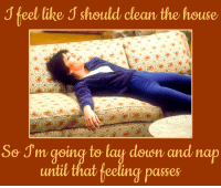 Lay's, Memes, and 🤖: J feel like J should clean the house  So Sm going to lay doon and nap  until that feeling passes Or just watch Three's Company today at 3p ET on Antenna TV!
