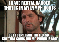 "Advice, Tumblr, and Animal: J HAVE RECTAL CANCER  THAT ISIN MY LYMPH NODES  BUTI DONT HAVE THE FLU, SOI  GOT THAT GOING FOR ME, WHICH IS NICE  imgflip.com <p><a href=""http://advice-animal.tumblr.com/post/169627285771/my-current-situation"" class=""tumblr_blog"">advice-animal</a>:</p>  <blockquote><p>My Current Situation</p></blockquote>"