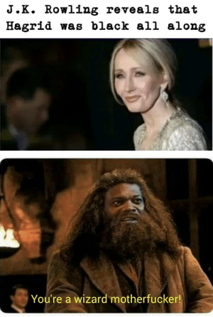 Black, J. K. Rowling, and Wizard: J.K. Rowling reveals that  Hagrid was black all along  You're a wizard motherfucker! Youre a Harry wizard